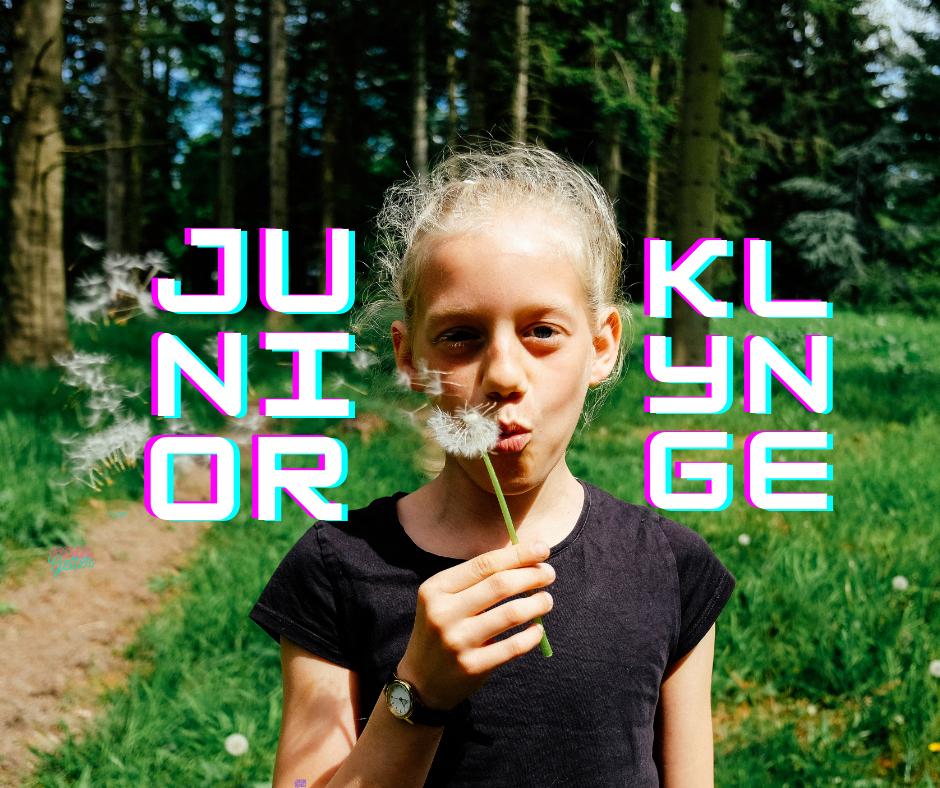 Juniorer online (3. - 6. klasse)